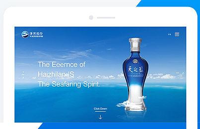 洋河股份英文品牌官网视觉设计